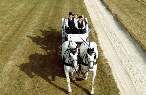 mariage-par-drone-08